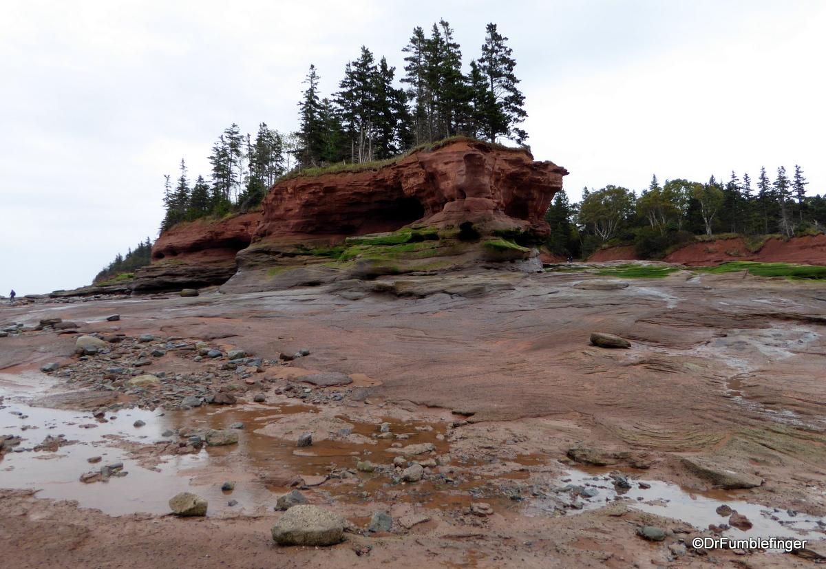 Ocean Floor, Bay of Fundy, Burntcoat Head Park, Nova Scotia