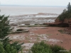 View of Bay of Fundy, Burntcoat Head Park, Nova Scotia