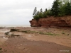 Ocean Floor, Bay of Fundy, Burntcoat Head Park, Nova Scotia