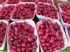 Cochrane Farmers' Market