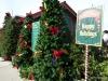 02 Christmas at Disney Springs