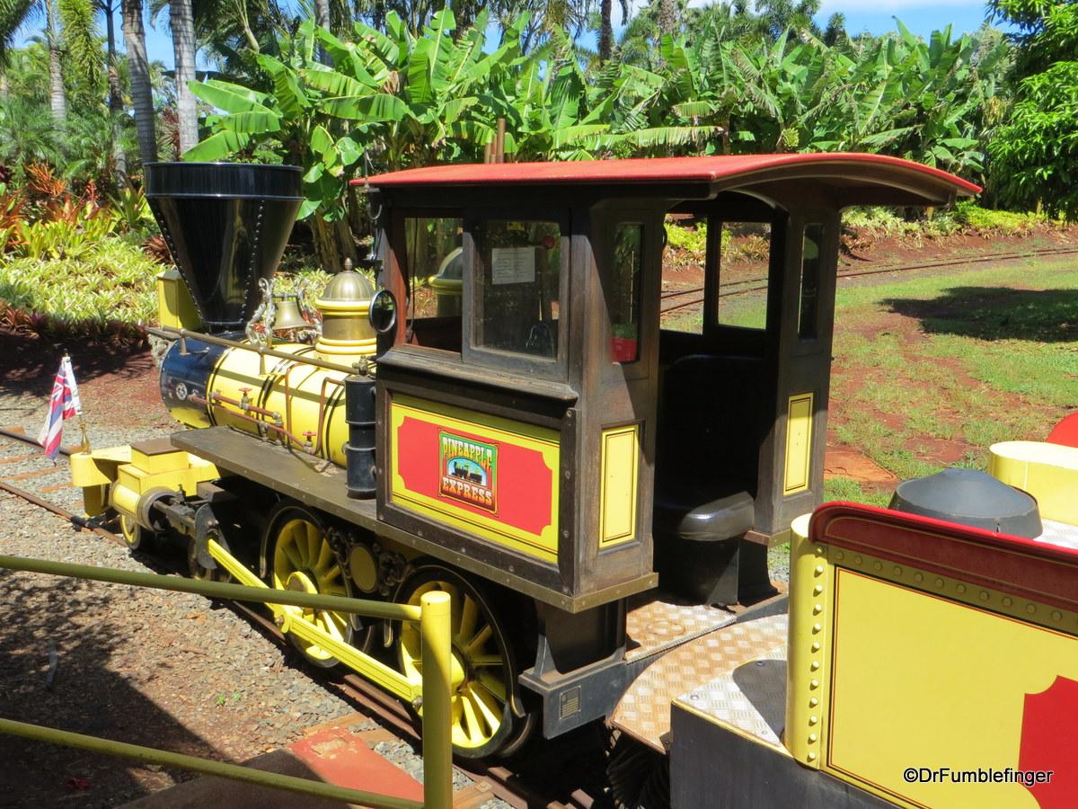 Dole Plantation , Oahu.  Pineapple Express