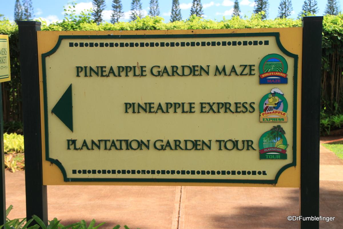 Dole Plantation , Oahu