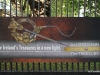 National Museum of Ireland: Archaeology -- Banner