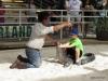 07 Gator wresting