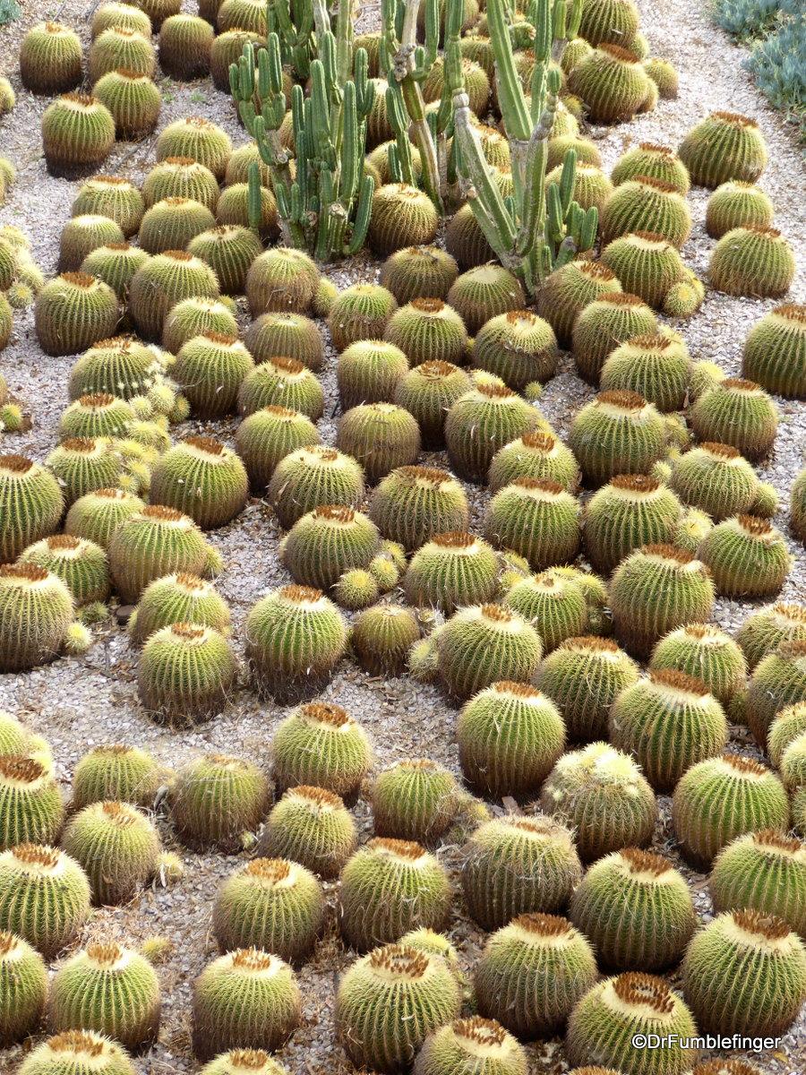 Cactus Garden, Getty Center, Los Angeles