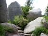 14 Aspen - John Denver Sanctuary 7-2015