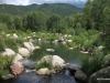 32 Aspen - John Denver Sanctuary 7-2015