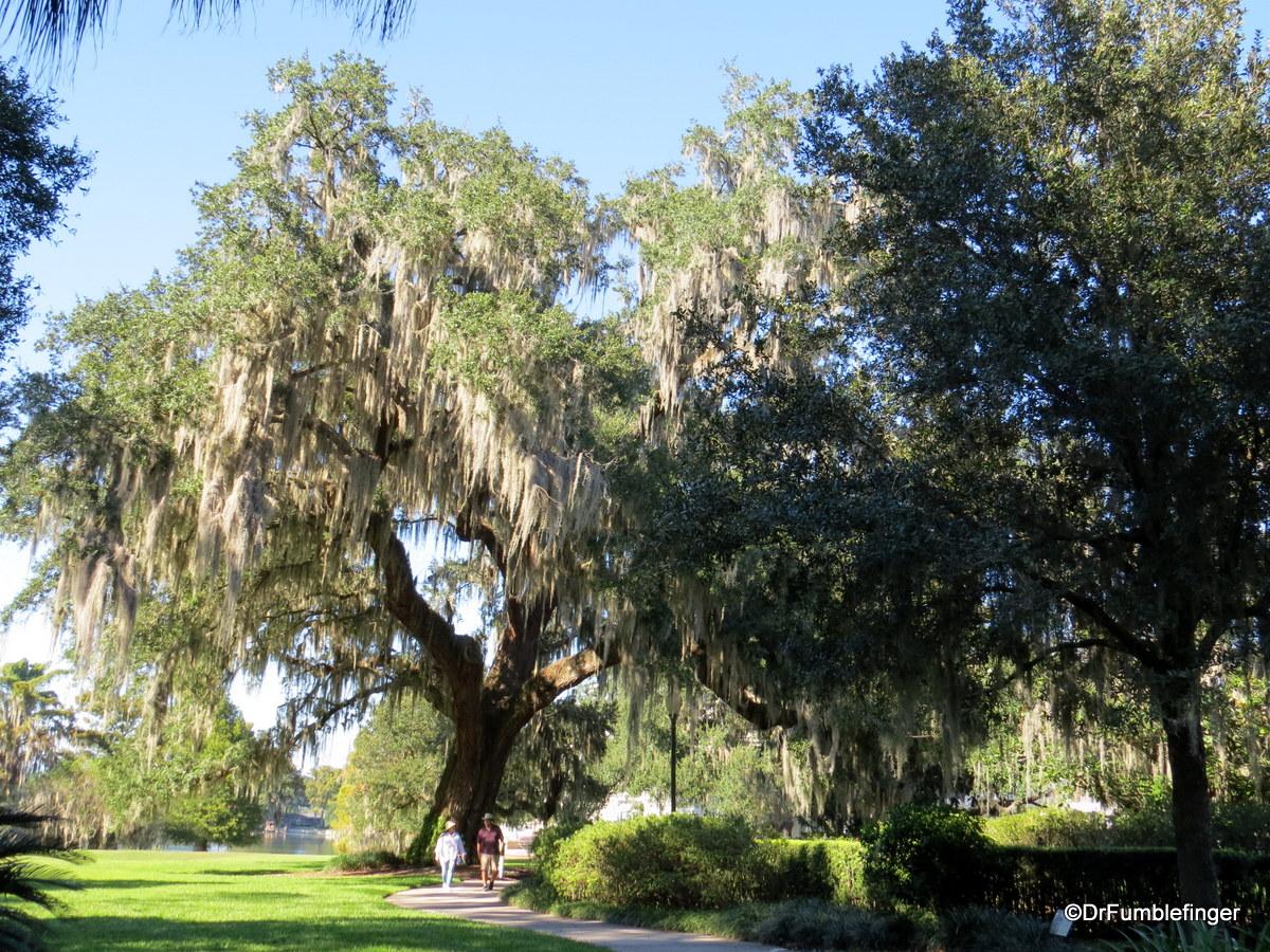 03a Leu Gardens, Orlando