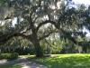 03 Leu Gardens, Orlando