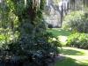 070b Leu Gardens, Orlando