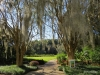 22 Leu Gardens, Orlando