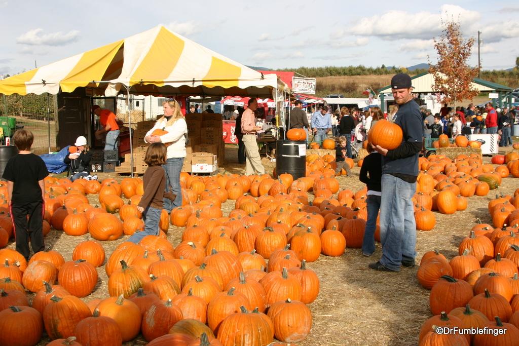 Fall 2008 006  Harvest Festival Green Bluff