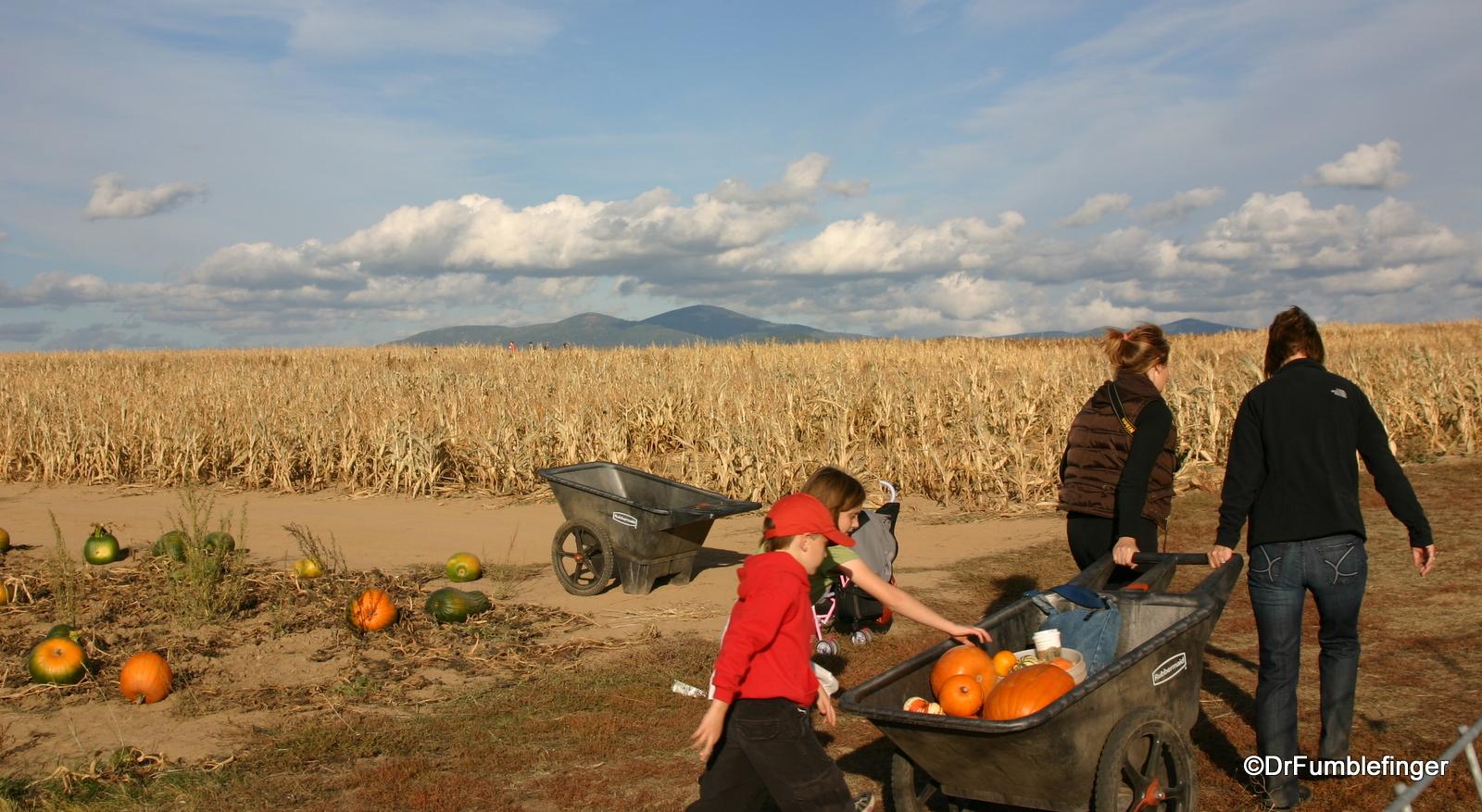 Fall 2008 011  Harvest Festival Green Bluff