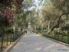 Park-like entry to Raj Ghat