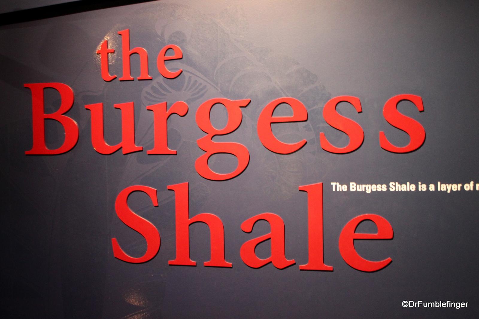 Burgess Shale, Royal Tyrrell Museum, Drumheller