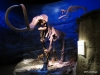 Mammoth and Saber Tooth Tiger exhibit, Royal Tyrrell Museum