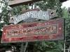 21 Signs of Aspen