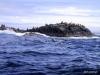 QCI Skeedans 2003 017 Seal Rock #1