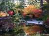 Fall 2008 022 Japanese Garden, Manito Park
