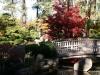 Fall 2008 024 Japanese Garden, Manito Park
