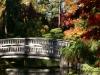 Fall 2008 025 Japanese Garden, Manito Park