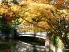 Fall 2008 026 Japanese Garden, Manito Park