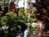 Fall 2008 027 Japanese Garden, Manito Park