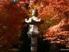 Fall 2008 031 Japanese Garden, Manito Park