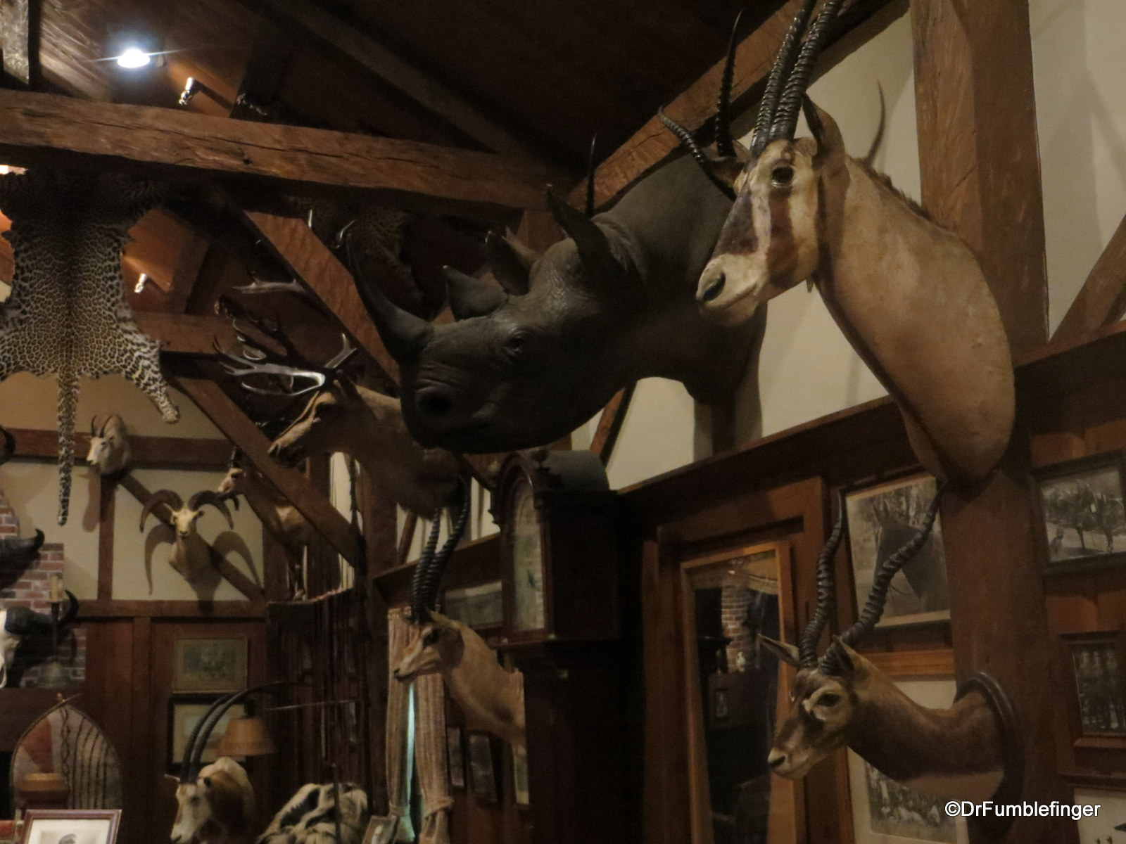 """Pic of the Week"""", July 10, 2015 : The Colby Trophy Room, Museum of ..."""