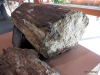 Valley of The Fire StateP Park  (52g) Petrified wood