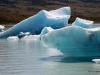 Viedma Glacier, El Chaltan 063 Iceberg