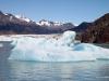Viedma Glacier, El Chaltan 064.  Iceberg