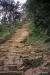 Trail to Adam's Peak