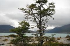 Ainsworth Bay, Tierra del Fuego