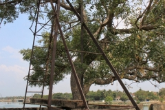 Torture device, used to suspend prisoners over the crocodile filled moat, Batticaloa Fort