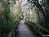 Everglades Big Cypress Bend Boardwalk