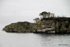Tucker's Islets