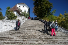 Stairs leading to top of Bled Island, Slovenia