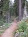 Blossom Lakes trail