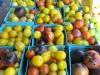 Boulder County's Farmers Market