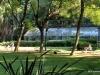 Greenhouse, Jardin Botanica, Buenos Aires