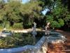 Fountain, Jardin Botanica, Buenos Aires
