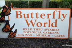Butterfly World, Florida