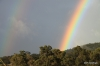 Double rainbow over Upcountry Maui