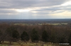Forested view from Monticello
