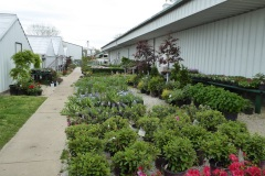 Hoge Greenhouses, College of the Ozarks, Branson