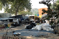 Delhi street scene. The piles of trash are a sight I'll never forget