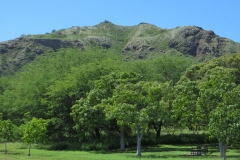 Interior, crater of Diamond Head State Monument