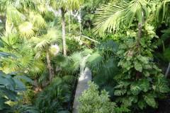 Grounds,  Ernest Hemingway Home, Key West